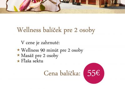 PSK_WELLNESSpobyt_A4_baner